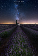 Valensole (Objectif dizi (O.DPhotographies)) Tags: paysages fineartphotography france megashot milkyway longexposure landscapes light valensole nikon nisifilter nikonphotographer nightshot nuit d750