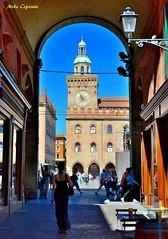 Vista palazzo D'Accursio... (michelecipriotti) Tags: bologna emiliaromagna centro palazzodaccursio comune viaclavature arco vicoli colori people cielo azzurro negozi