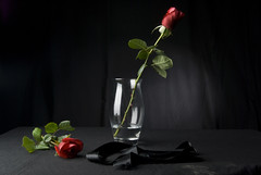 Bodegn (Psychotic_Rukia ~~) Tags: lazo agua negro rosas rojas jarron atrezzo
