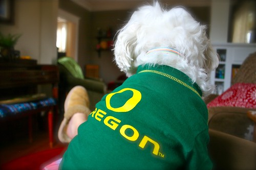 Wink is rooting for the Ducks