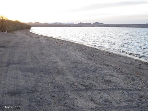 Havasu Beach -1