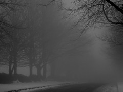 The Fog (pixiepic's) Tags: road trees snow fog oldham hollinwood platinumheartaward