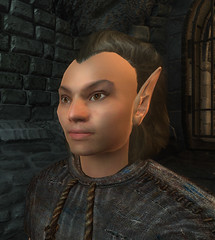 male Wood Elf 00 default