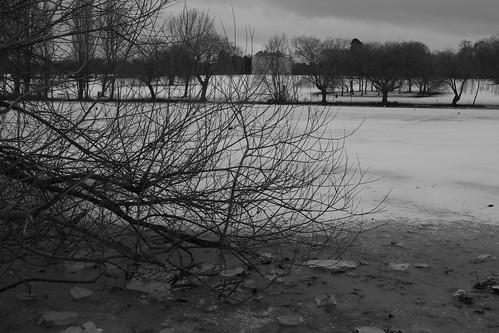 Snow Day 9