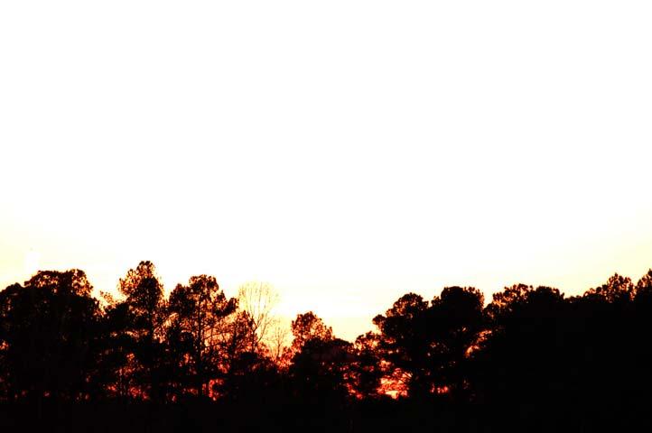 Orange & White Sunset
