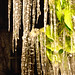 icicles at night 05