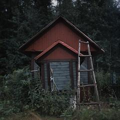 well (Evgeny Chulyuskin) Tags: old house building 120 6x6 tlr film forest mediumformat garden wooden slide well squareformat shack ladder yashica yashicamat124