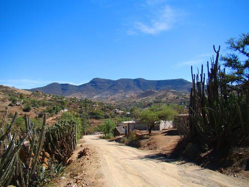 En Los Reyes Metzontla (32)