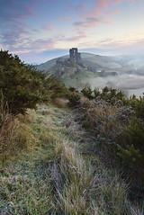 Winter Mist, Corfe Castle (antonyspencer) Tags: uk winter mist castle nature sunrise landscape frozen frost view heather ruin national dorset trust spencer antony corfe hilltop purbeck gorse downland vieew 1635ii 5dii