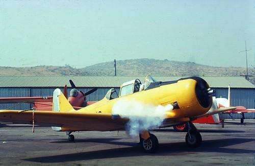 Yellow trainer