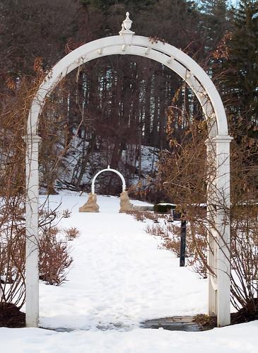 Arch Rose Garden