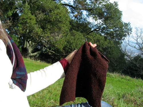 2010-01-31_briones_knitting.jpg