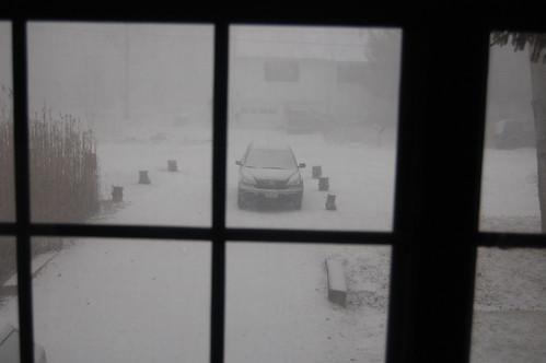 Surprise blizzard