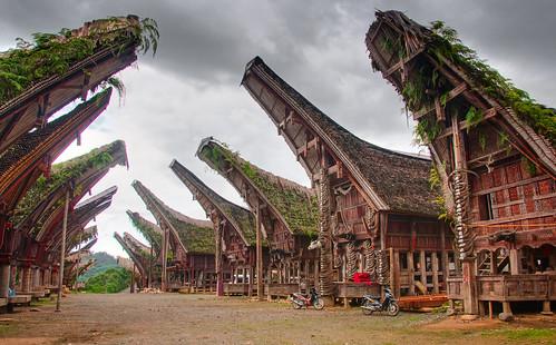 Tana Toraja 05