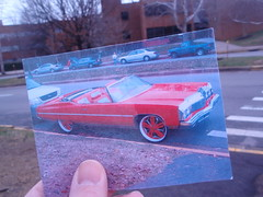 photography project (4)