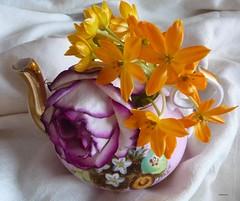 A LITTLE POT OF FLOWERS ! (picolojojo) Tags: flowers flower nature fleur rose fleurs panasonic teapot théière supershot worldbest anawesomeshot concordians goldstaraward kunstplatzlinternational