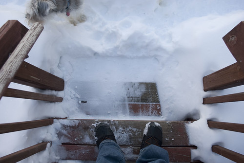 backyard winter steps