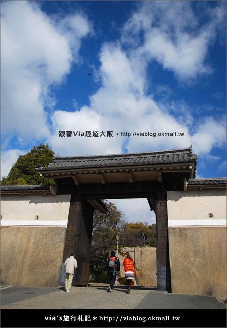【via關西冬遊記】大阪城天守閣!冬季限定:梅園梅花盛開23