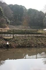 四季の森公園の清水の谷(valley of spring water at Shikinomori park, Japan)
