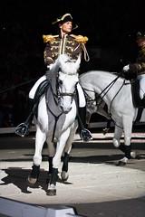 Lippinzzaner Horses-72 (Ben Leal) Tags: horse stallions aac lippizzaner