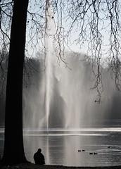 IMG_0199 (MaPiPhoto) Tags: de janvier parc 2009 sceaux