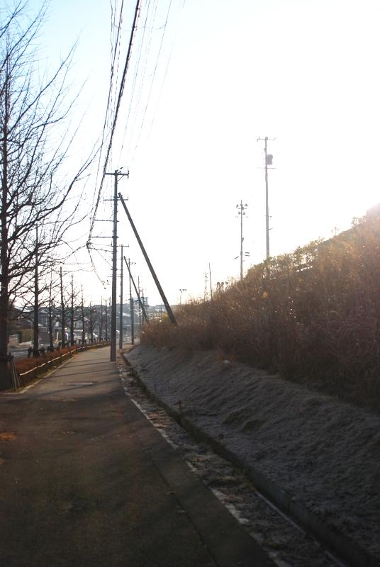 morningroad