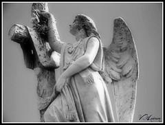 Angel & Cross (gairid1791) Tags: cemeteries angel greenwoodcemetery neworleans tombs stoneangel cemeteryangels