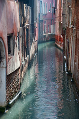 venice backyard (H o g n e) Tags: venice winter red italy green water canal backyard italia explore venezia adriatic explored pprowinner
