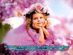 Romani 08-02 (Palosi Marton) Tags: kids childrens copii crestine versete biblice