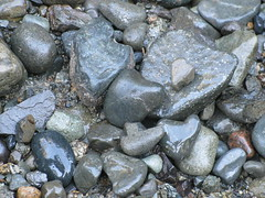 More hearts by the river's edge (maureenlafleche) Tags: hearts rocks heart alma romance valentines valentinesday stoneheart kardia heartsinnature heartrocks corozon rockshapescordata heartartfromtheheart
