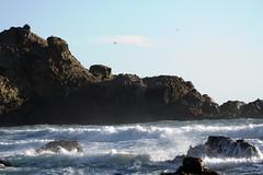 EBV-4767.jpg (kirklandj) Tags: bigsur centralcalifornia californiacoast pfeifferbeach