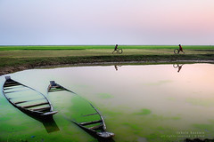 pair of devineness! (Tahsin Hossain) Tags: life blue sunset man color reflection green water beauty field kids rural landscape nikon colorful village paddy walk horizon lifestyle explore barefoot cart frontpage boad bangladesh plating chieldren haor 18200mm d90 shunamganj exiff56