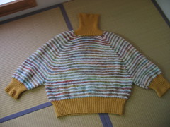 Cowl Neck Pullover - finished! 1