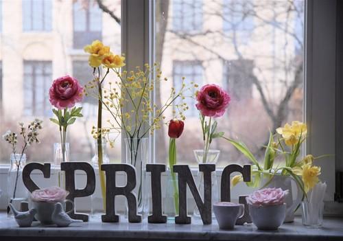 The Spring corner