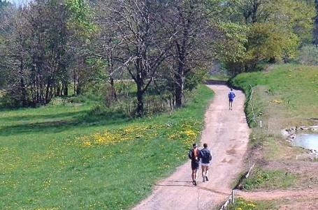 <em>Běhání po zelené aneb zelené běhání</em>