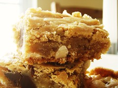 chewy chunky blondies with chocolate chips, coconut, walnuts - 35