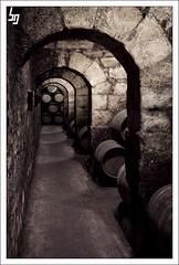 El paso de los años... (borjagomez) Tags: santiago frank arquitectura edificio gehry bodega alava marques rioja euskadi vino araba viñedo riscal alavesa caatrava