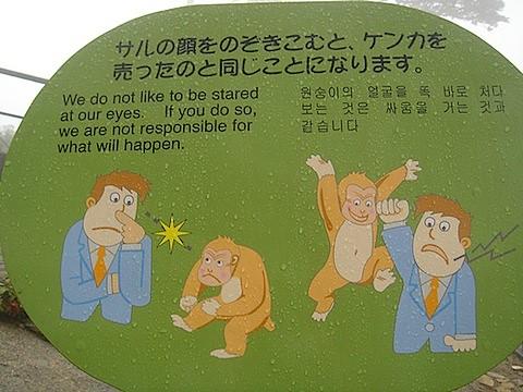 JAPANESE MONKEY SIGNAGE