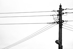 street light wire cable pylon electricity