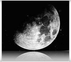 Por los portales de la luna vaga un sueño lentamente... (conejo721*) Tags: argentina amor luna reflejo palabras mardelplata poesía poema pasión sentimientos conejo721