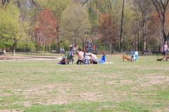DSC_0920 (Kmo139) Tags: sunshine memphis tennessee bongo midtown april 2010 overtonpark