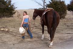 Female horse ass - photo#4