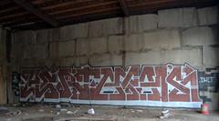 Hert Atak ...DKLT (break.things) Tags: nyc newyorkcity ny newyork brooklyn graffiti 09 be atak hert nsf dethkult dklt
