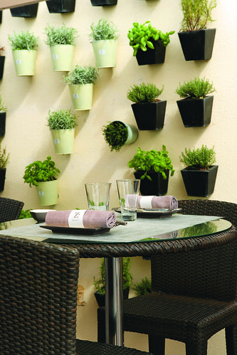 Plants on the Wall at the Z plage beach restaurant at Hotel Martinez Cannes