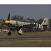 Hawker Sea Fury1