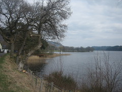 Loch Ard (LoudonD) Tags: foresthills kinlochard 13thapril