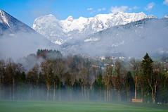 Foggy Morning in Berchtesgaden National Park (Sergiu Bacioiu) Tags: morning trees mist mountain alps misty fog germany bayern bavaria berchtesgaden nationalpark alpine alpen deu nationalparkberchtesgaden berchtesgadennationalpark outstandingromanianphotographers