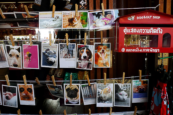 Pattaya Market