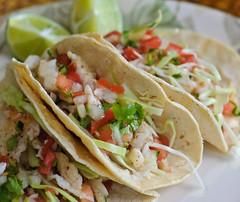 4580363414 7ba82d5103 m d Mexican Fish Tacos