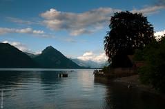 Lago di Thun-3870 (cocco379) Tags: swiss oberlandbernese lagodithun2009